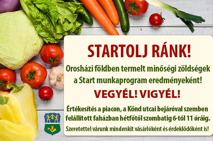 Zöldségesek a Start munkaprogram eredményeként!