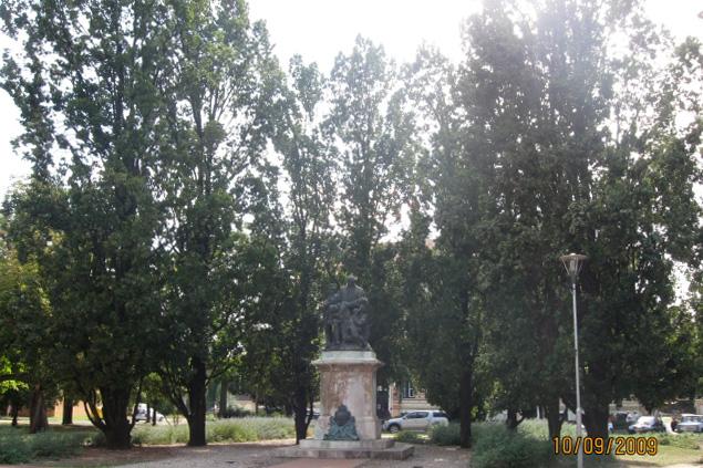 Árpád kerti piramistölgyek